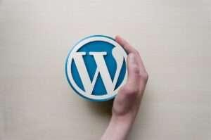 piccola -guida- WordPress-per-principianti